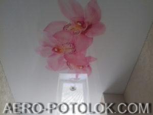 натяжной потолок с фотопечатью фото 6