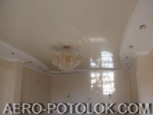 потолок в зал фото 2