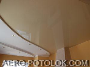 потолок в зал фото 1